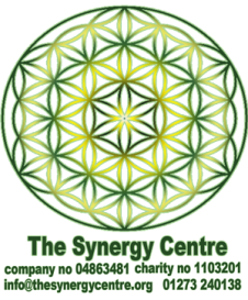 synergy-logo-1